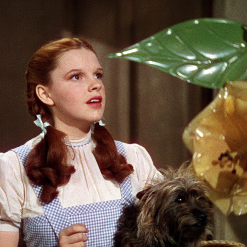 "Judy Garland in ""The Wizard of Oz"" (Everett Collection)"