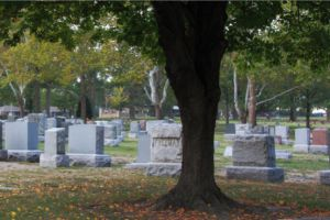 Photo of Mount Hope Cemetery, Funeral Chapel & Reception Center